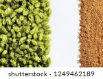 beer template with hops and... | Shutterstock . vector #1249462189