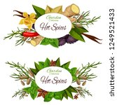 hot spices icons with seasoning ... | Shutterstock .eps vector #1249521433