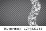 blizzard snowflakes on... | Shutterstock .eps vector #1249531153