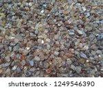 specimen zircon gemstone rough... | Shutterstock . vector #1249546390