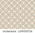 abstract background texture in... | Shutterstock .eps vector #1249555726