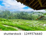 jatiluwih rice terraces  bali ...   Shutterstock . vector #1249576660