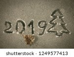 the inscription 2019 and the... | Shutterstock . vector #1249577413