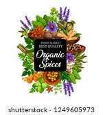 spice of natural organic plants ... | Shutterstock .eps vector #1249605973