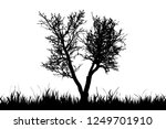vector silhouette of grass with ... | Shutterstock .eps vector #1249701910