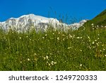the snow covered peaks of the... | Shutterstock . vector #1249720333