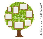 green family tree with frames... | Shutterstock .eps vector #1249765699