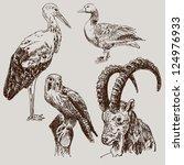 digital drawing of stork ... | Shutterstock .eps vector #124976933