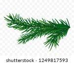 fir branch isolated. vector... | Shutterstock .eps vector #1249817593