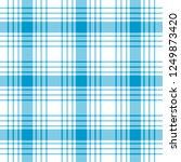 tartan traditional checkered...   Shutterstock . vector #1249873420