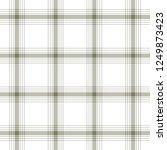 tartan traditional checkered...   Shutterstock . vector #1249873423