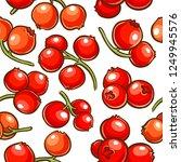 cranberry berries vector pattern   Shutterstock .eps vector #1249945576
