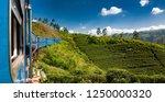 train from nuwara eliya to...   Shutterstock . vector #1250000320