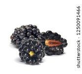 fresh  sweet and tasty... | Shutterstock .eps vector #1250091466