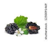 fresh  sweet and tasty... | Shutterstock .eps vector #1250091469