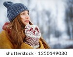 winter young woman portrait.... | Shutterstock . vector #1250149030