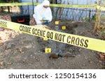 crime scene investigation   Shutterstock . vector #1250154136