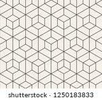 vector seamless pattern. modern ... | Shutterstock .eps vector #1250183833