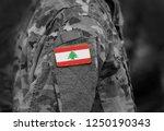 flag of lebanon  on military... | Shutterstock . vector #1250190343