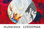 hand painted ink texture.... | Shutterstock . vector #1250209666