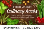 herbs for culinary from market... | Shutterstock .eps vector #1250231299