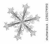 snowflake isolated on white... | Shutterstock .eps vector #1250279593