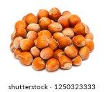 handful of ripe hazelnuts in... | Shutterstock . vector #1250323333