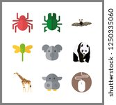 9 wildlife icon. vector... | Shutterstock .eps vector #1250335060