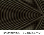 abstract gold color circle... | Shutterstock .eps vector #1250363749