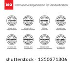 set of international... | Shutterstock .eps vector #1250371306