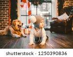 friendship man child and dog... | Shutterstock . vector #1250390836