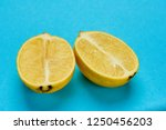 lemon in section on blue... | Shutterstock . vector #1250456203