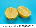 lemon in section on blue... | Shutterstock . vector #1250456326