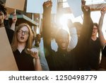 protesters fighting for their... | Shutterstock . vector #1250498779