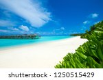 tropical beach in maldives with ... | Shutterstock . vector #1250515429