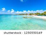 Riviera Maya   Paradise Beach...