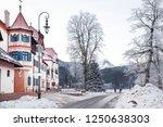 schwangau  bavaria  germany  ... | Shutterstock . vector #1250638303