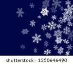 winter snowflakes border card... | Shutterstock .eps vector #1250646490