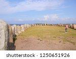 ales stones  mystical monument  ... | Shutterstock . vector #1250651926