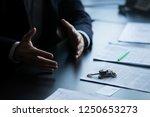 close up of hands gesturing... | Shutterstock . vector #1250653273