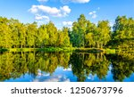 forest river reflection... | Shutterstock . vector #1250673796