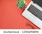 color of the year 2019 living... | Shutterstock . vector #1250690890