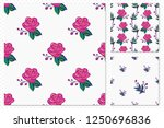 floral pattern set. collection... | Shutterstock .eps vector #1250696836