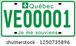 electric vehicle licence plates ... | Shutterstock .eps vector #1250735896