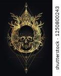 Human Skull And Lotus Over...