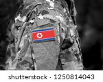 flag of north korea on soldiers ... | Shutterstock . vector #1250814043