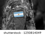 flag of argentina on soldiers... | Shutterstock . vector #1250814049