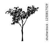 black tree silhouette ...   Shutterstock .eps vector #1250817529