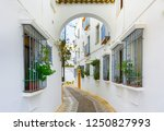 picturesque white street of... | Shutterstock . vector #1250827993