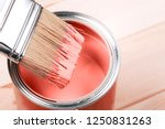 brush with living coral paint... | Shutterstock . vector #1250831263